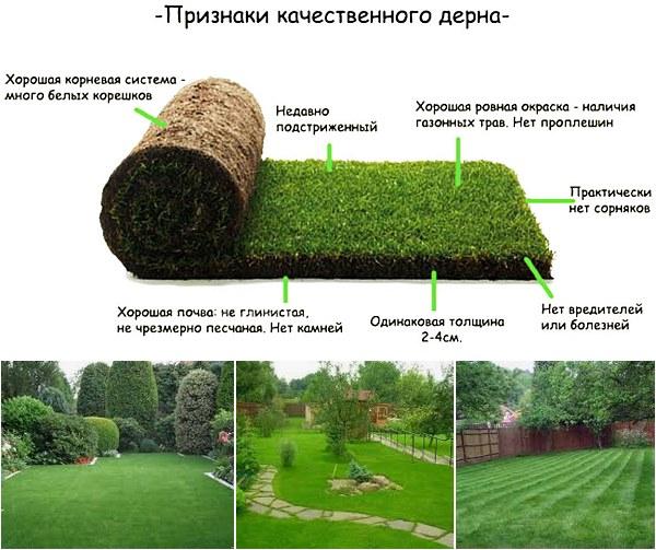 Правила укладки искусственного газона