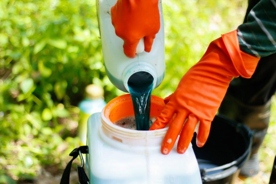 Как приготовить бордосскую жидкость для опрыскивания: рецепты 1% и 3% растворов