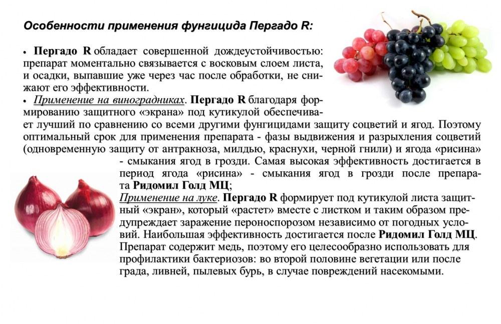 ᐉ инсектофунгициды - виноград - roza-zanoza.ru