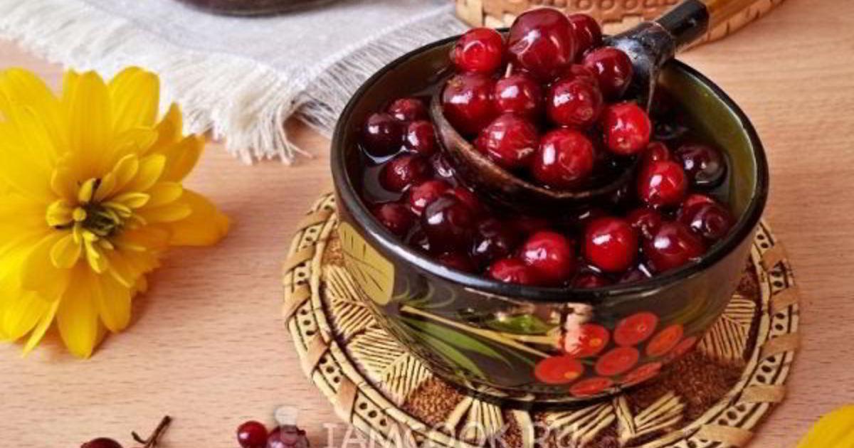 10 лучших рецептов приготовления протертой с сахаром брусники на зиму