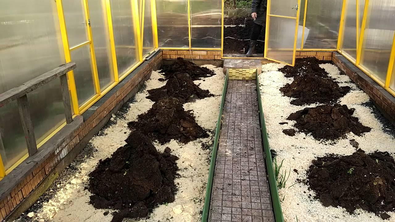 Обработка земли перед посадкой огурцов: какую почву любят огурцы, как подготовить грядку и чем обработать участок после уборки урожая