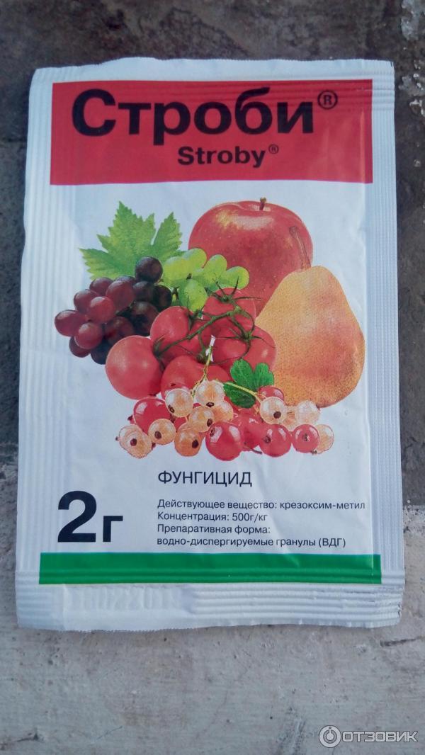 Фунгицид дискор: применение для растений на огороде и в саду