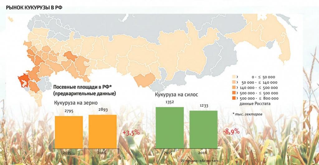 ✅ когда сажать кукурузу в открытый грунт семенами в средней полосе россии: уход, выращивание - tehnomir32.ru