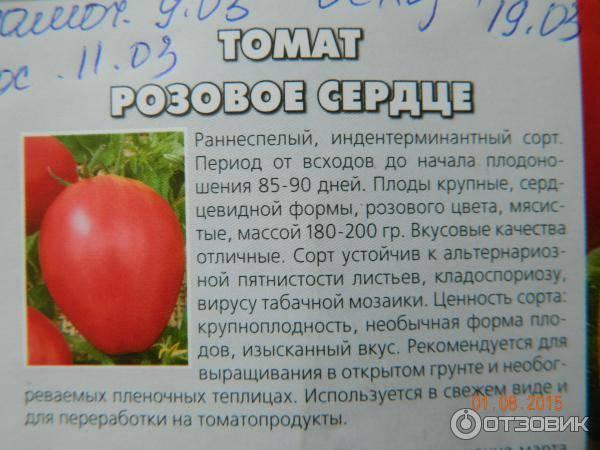 Томат розовая ляна с характеристикой и описанием сорта с фото, отзывами о семенах и урожае