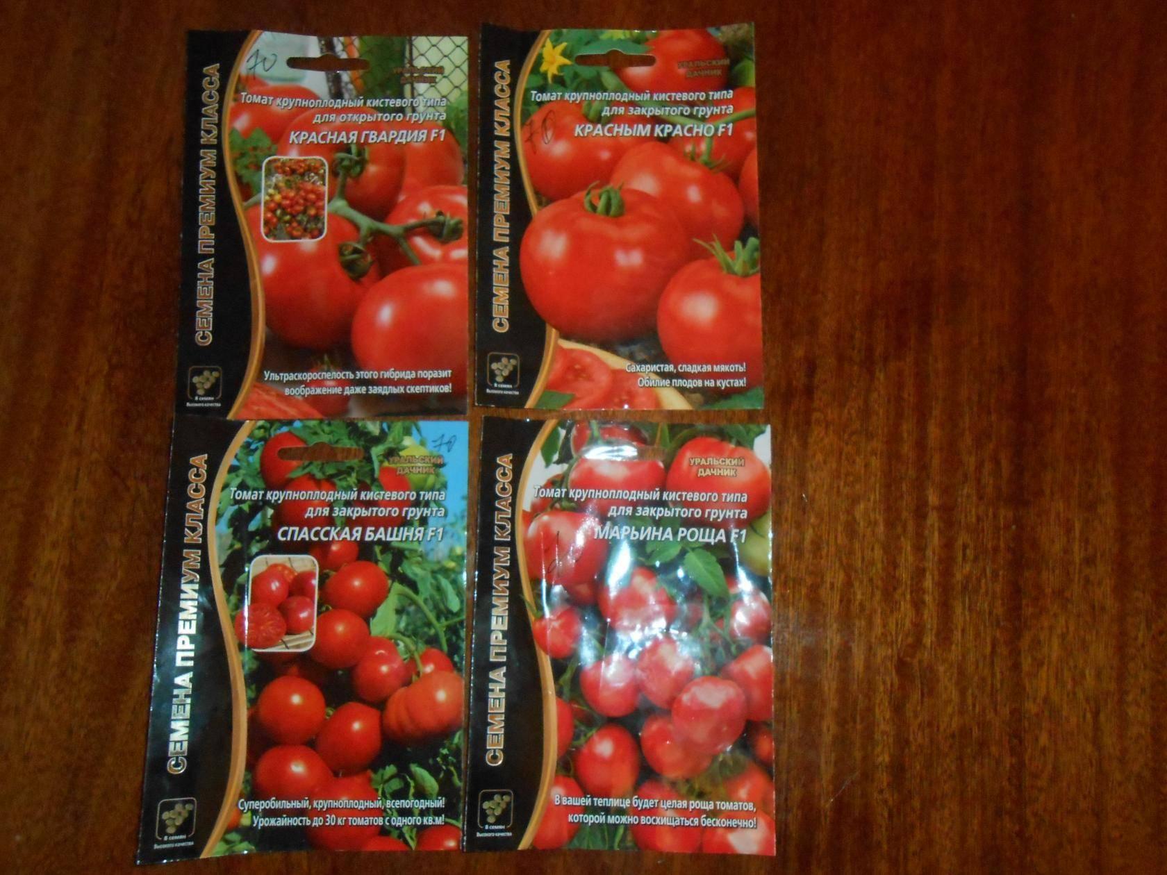 Описание и выращивание гибридного сорта томатов красная гвардия f1