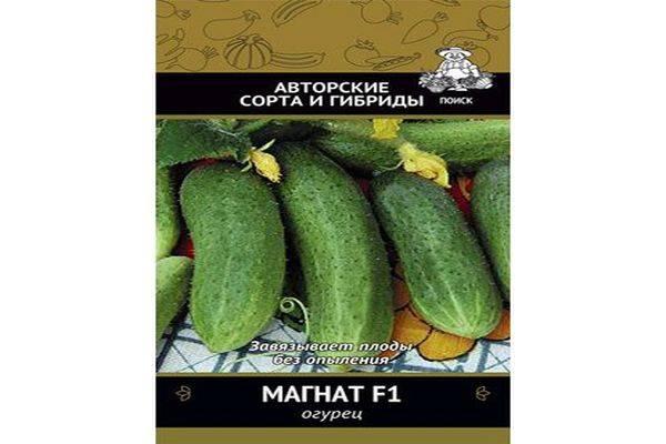 Огурцы магнат f1: описание и фотографии, отзывы, урожайность и устойчивость