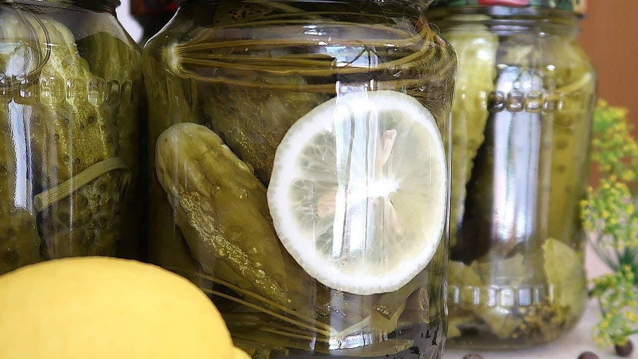 Маринованные огурцы с яблоками: вкусные рецепты засолки, заготовки на зиму