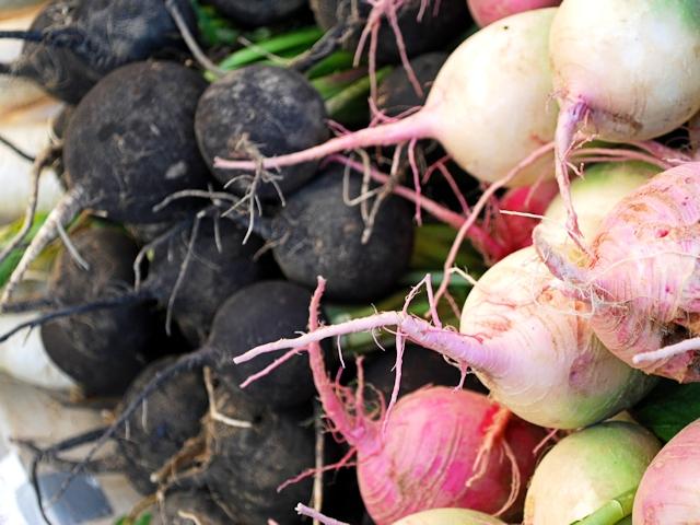 Когда убирать редьку черную на хранение на зиму: сроки когда выкапывать овощ с грядки в сибири и других регионах, а также боится ли корнеплод морозов