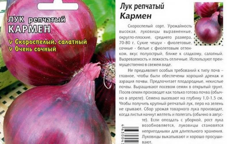 Сорта лука - описание 37 лучших сортов репчатого лука с фото и отзывами