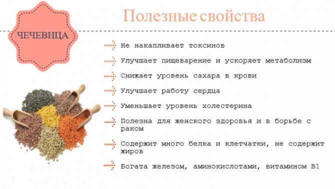Чечевица - полезные свойства, состав и противопоказания (+ 17 фото)