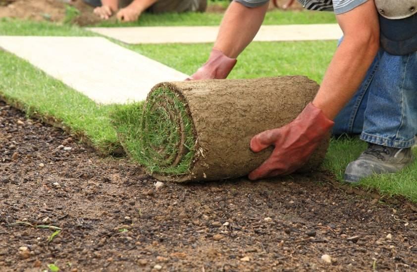 Технология и этапы укладки искусственного газона