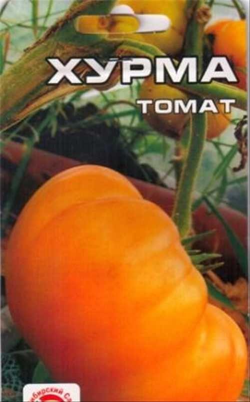 Томат хурма: описание сорта и его характеристика. секреты выращивания и советы по посадке и уходу (видео + 120 фото)