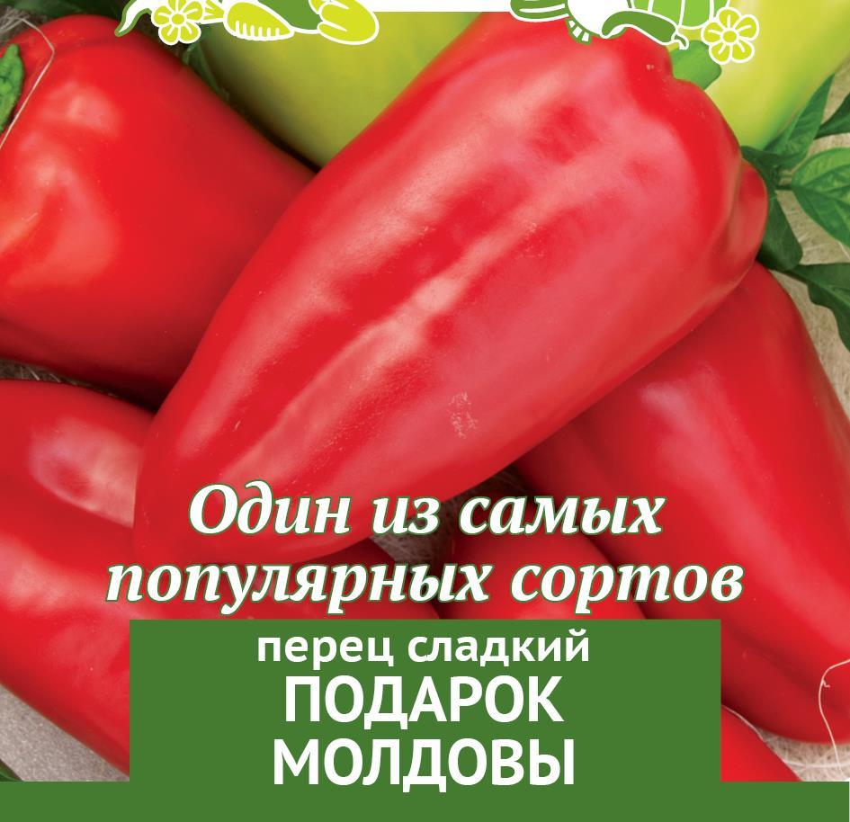 Перец подарок молдовы: характеристика и описание сорта с фото, отзывы о семенах и урожае, особенности выращивания