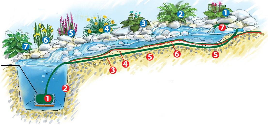 Подготовка декоративного водоема к зиме: этапы работы, что делать с растениями и жителями водоема