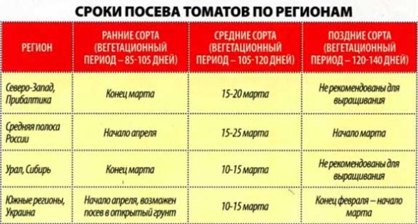 Когда сажать помидоры на рассаду в 2021 году по лунному календарю на урале: таблица