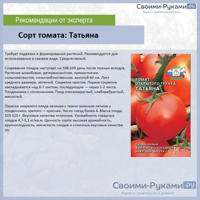"""Томат """"семейный f1"""": невероятная урожайность гарантирована"""