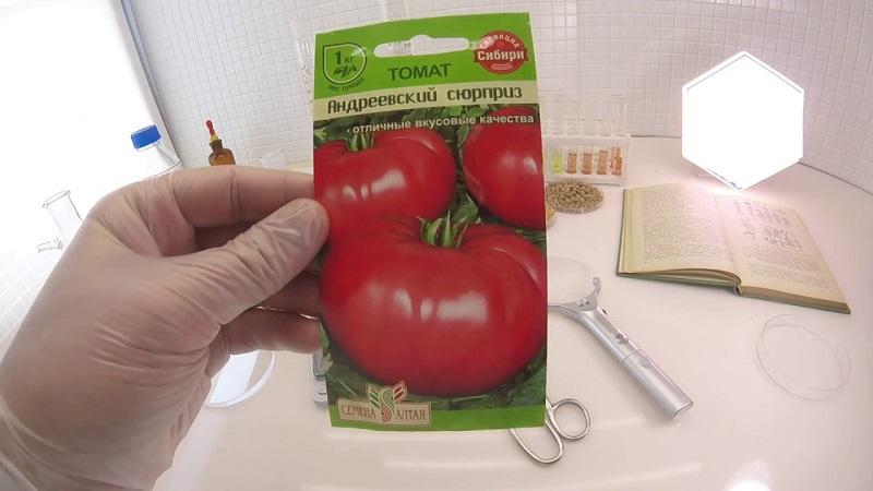 Характеристика и описание сорта томата лабрадор, его урожайность