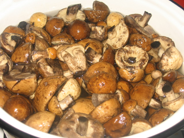 Маринованные подберезовики - рецепт вкуснейшей заготовки на зиму