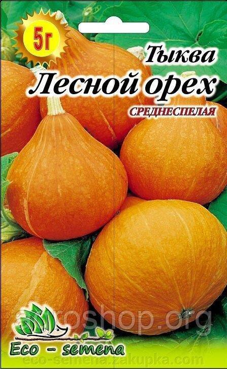 Описание сорта тыквы лесной орех выращивание и уход - агро журнал pole39.ru