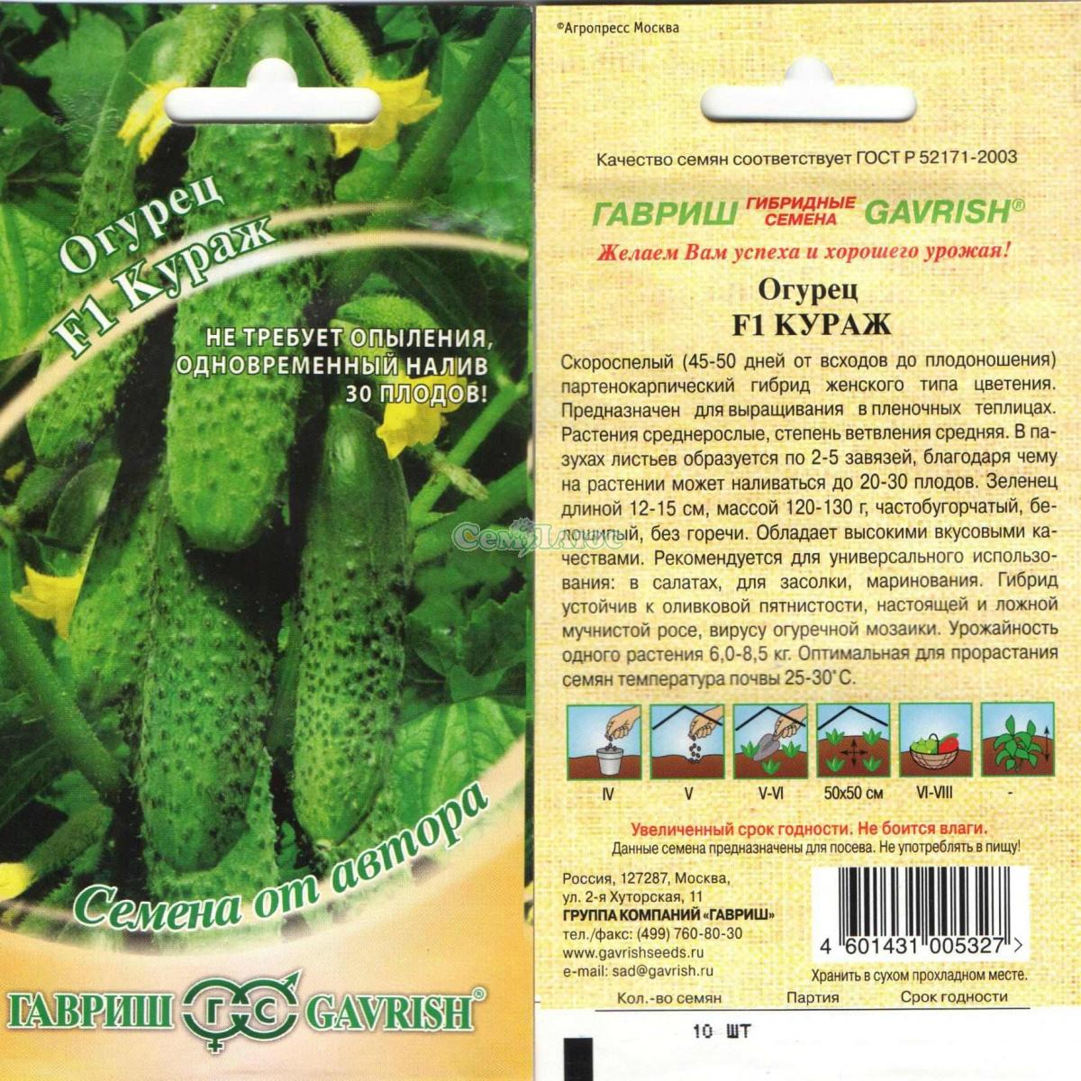 Огурец драгун f1 — описание и характеристика сорта