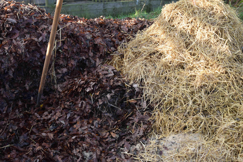 Применение сосновой и другой коры деревьев: садоводство, удобрения, поделки и другое