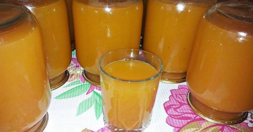 Что приготовить из абрикосов на зиму и 19 лучших пошаговых рецептов