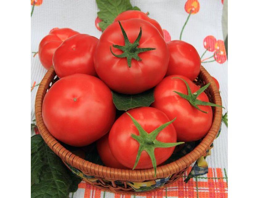 """Томат """"рома"""" f1: описание сорта, характериктика и фото помидор """"рома"""" vf, а также достоинства сорта и его недостатки русский фермер"""