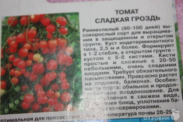 Томат чудо гроздь