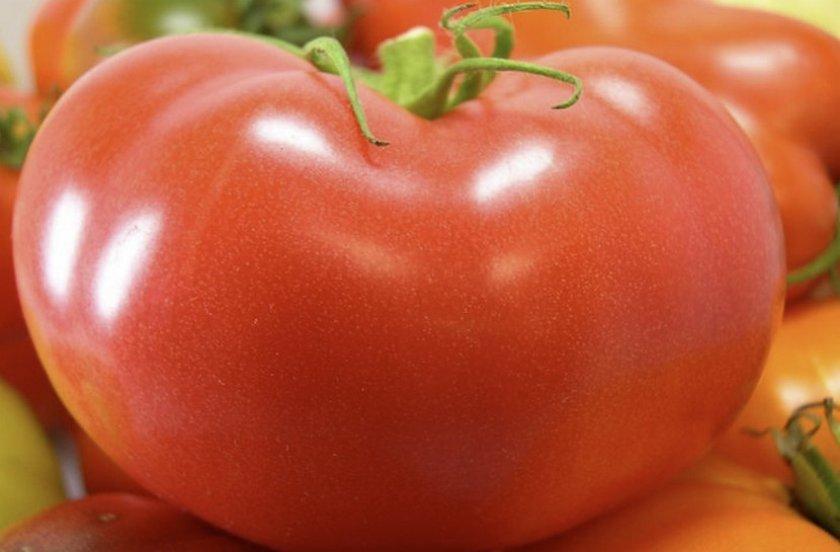 Томат джелимбер: характеристика и описание, отзывы, фото, урожайность сорта