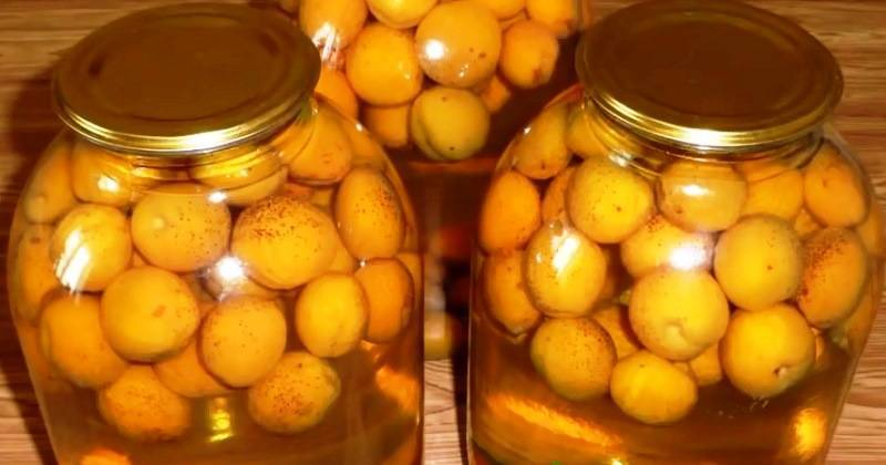 Абрикосовый компот – из свежих, сушеных, замороженных абрикосов с косточками и без на зиму