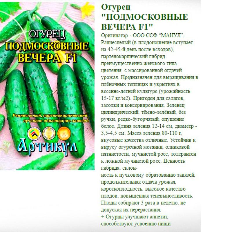 Огурец подмосковные вечера f1: отзывы, описание сорта и фотографии, выращивание