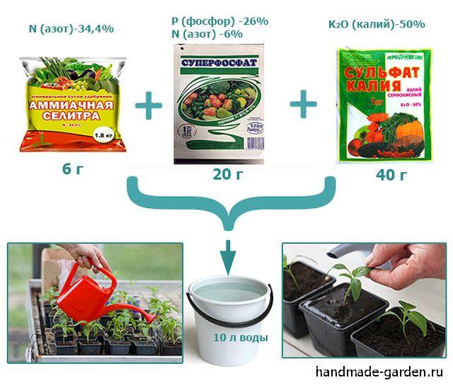 Инструкция, как нужно использовать корневин при пикировке томатов