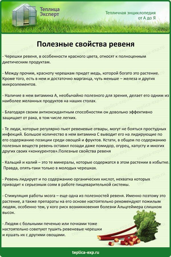 Ревеня корень - инструкция, состав, аналоги, показания, дозировка, противопоказания, цена - медобоз