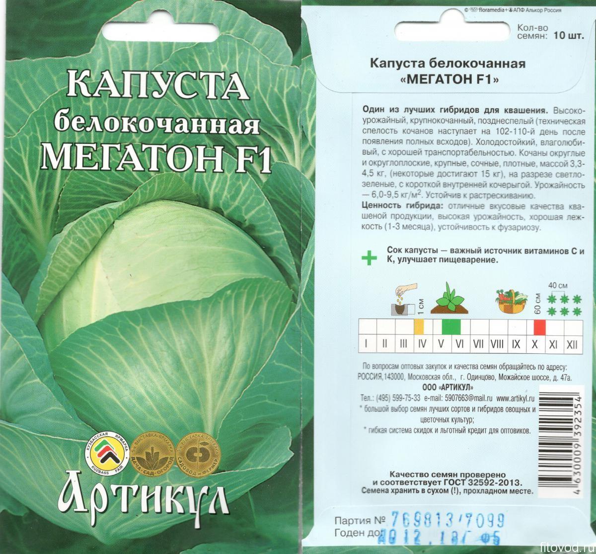 Капуста мегатон f1: описание и фото сорта, характеристика преимуществ и недостатков, посадка семян и рассады, уход за овощем, а также возможные болезни русский фермер