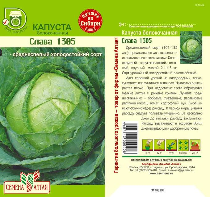 Капуста слава: описание сорта, фото, отзывы огородников