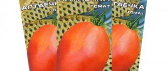 Описание томата аленка, выращивание гибридного сорта и уход