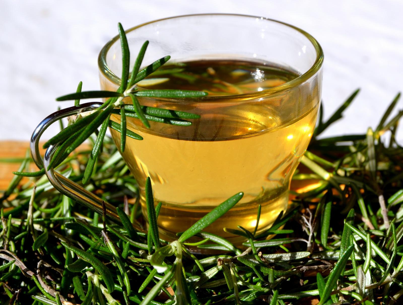 Розмарин лечебные свойства и противопаказания отзывы рецепты