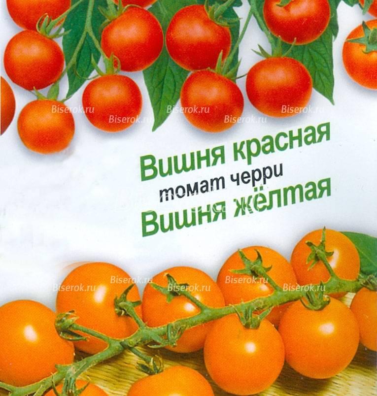 """Томаты """"сахарная слива"""" красная, желтая, малиновая - описание и характеристики сорта русский фермер"""
