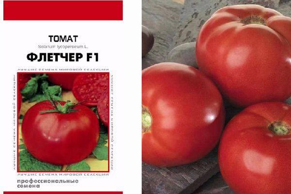 Биф томаты – что это такое, сорта и гибриды, фото и описание плодов, отзывы огородников