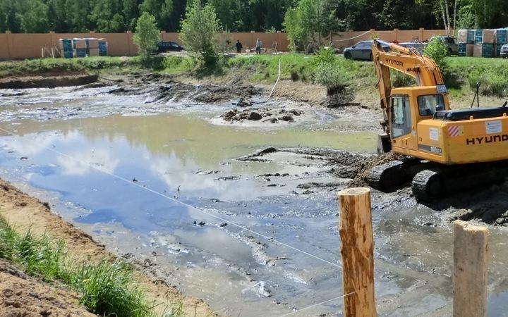 Эффективные методы очистки водоёма на участке – секреты идеально чистого пруда