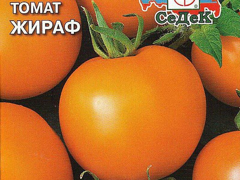 Томат инжир красный: описание сорта, фото и отзывы