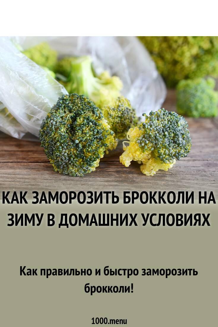 Как сохранить брокколи на зиму в домашних условиях