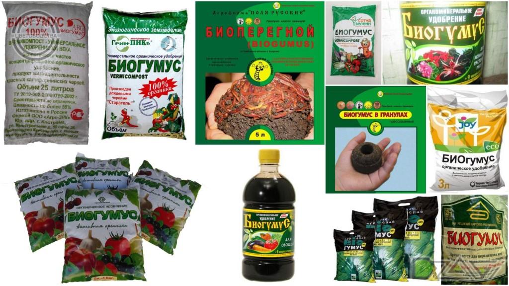 Что такое биогумус и как его использовать для огорода и рассады