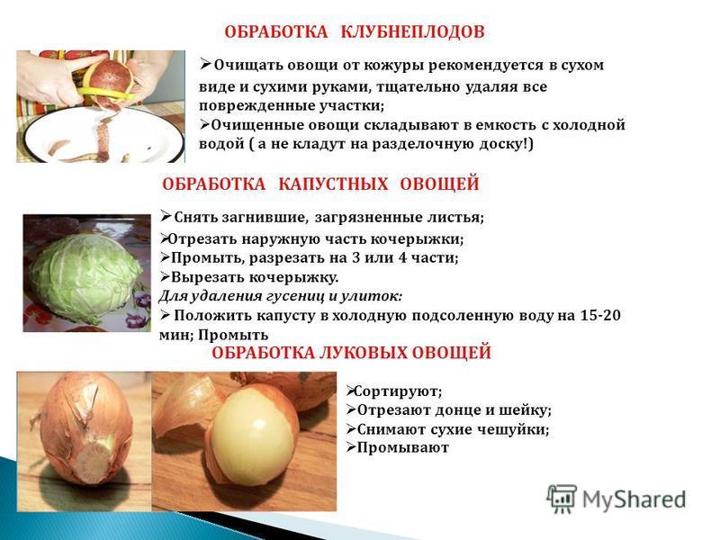 Чайный гриб: научные факты о пользе и вреде комбучи