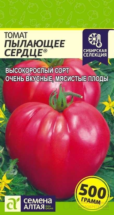 Томат воловье сердце: описание и характеристика сорта, фото и отзывы, особенности выращивания, посадки на рассаду