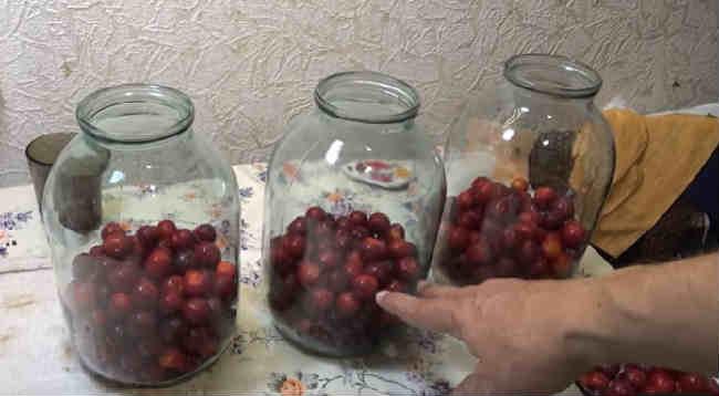 Рецепты из алычи на зиму: что можно приготовить, как сделать заготовки