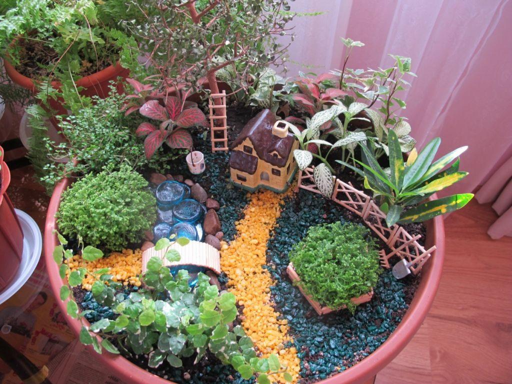 Мини сад в горшке: идеи для сада, виды растений, стиль оформления
