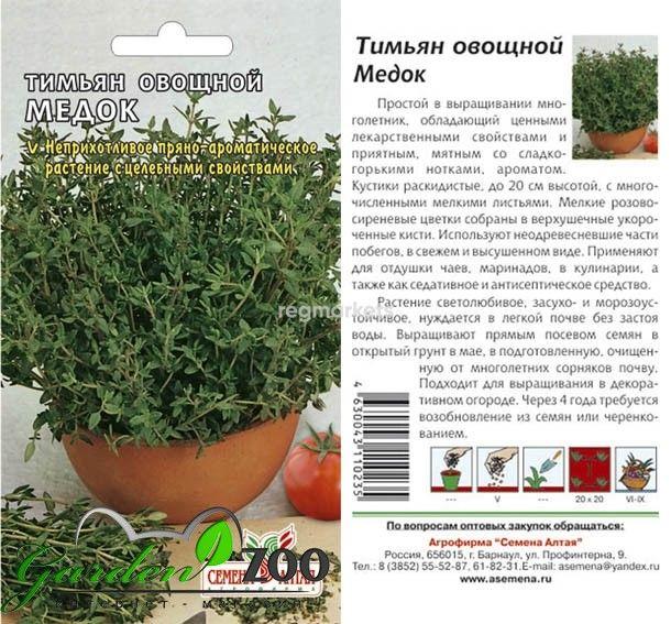 Тимьян: лечебные свойства и противопоказания для организма человека