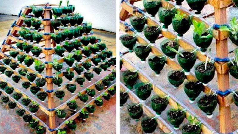 Высокие грядки для клубники: особенности финской технологии выращивания