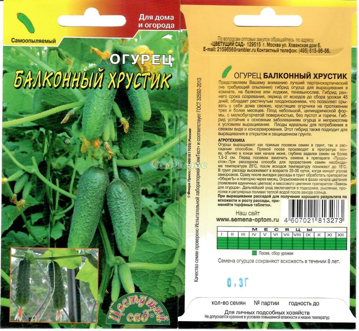 Огурцы на балконе: выращивание на окне пошагово